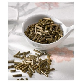 Secretosan, supports the respiratory tract in chronic problems