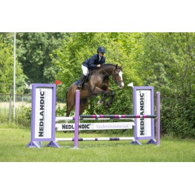SUPPLEMENTS FOR SPORT HORSES